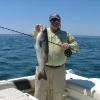 fish6lg